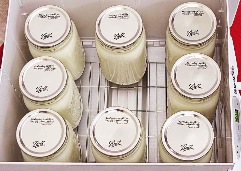 8qt yogurt in proofer 3