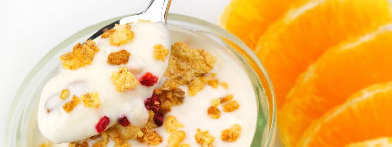 classic yogurt